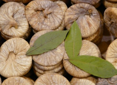Figs toto Cure Tonsillitis permanently
