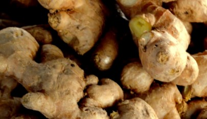 Ginger Root Shred Breast Fat