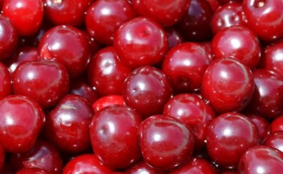 Cranberry Juice For Kidney Infectiontreatment