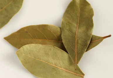 Bay Leaf to get rid of Congestion in Chest Fast